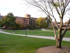キャンパス中心のモール